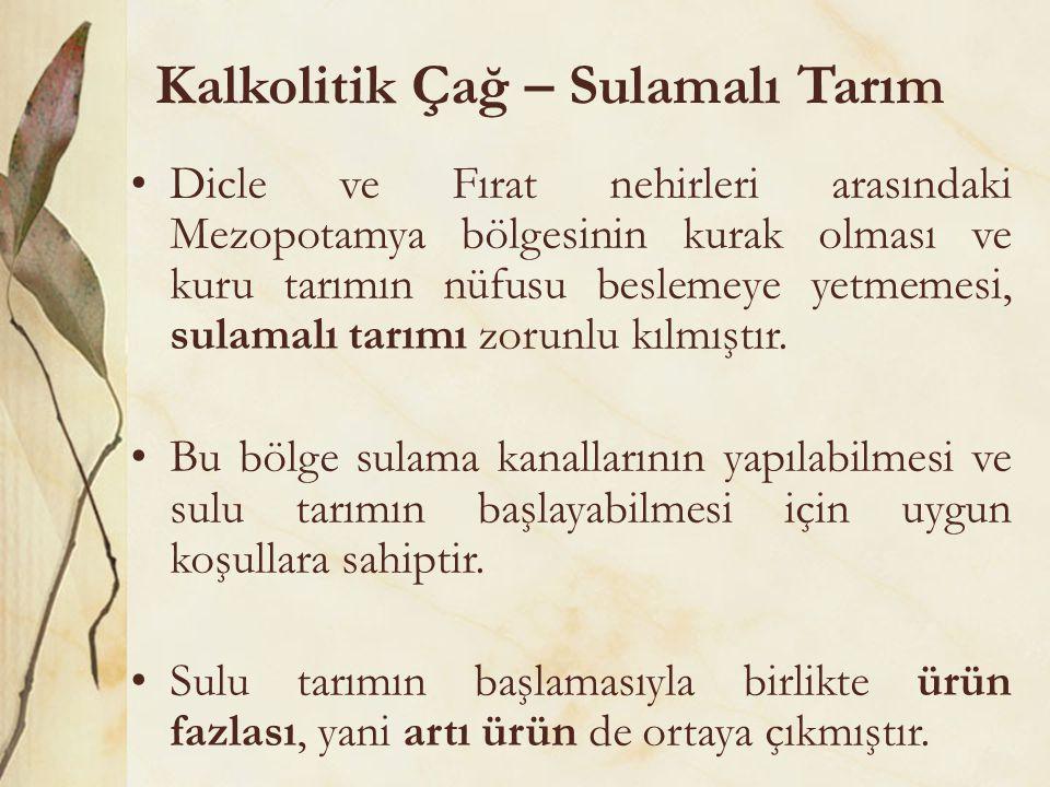Kalkolitik Çağ – Sulamalı Tarım •Dicle ve Fırat nehirleri arasındaki Mezopotamya bölgesinin kurak olması ve kuru tarımın nüfusu beslemeye yetmemesi, s