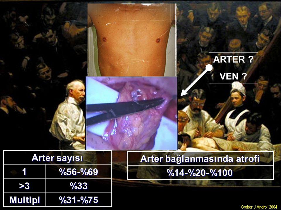 ARTER ? VEN ? Arter sayısı 1%56-%69 >3%33 Multipl%31-%75 Arter bağlanmasında atrofi %14-%20-%100 Grober J Androl 2004