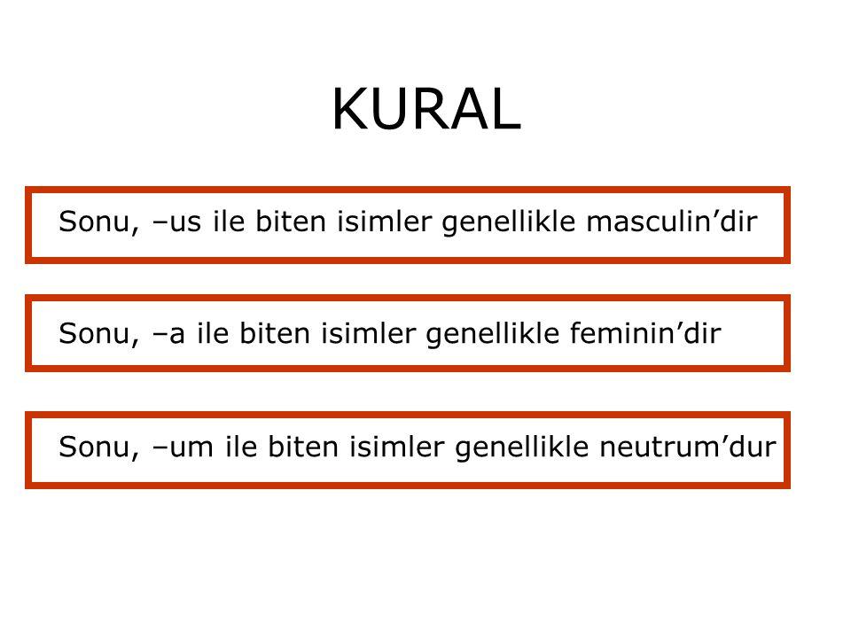 KURAL Sonu, –us ile biten isimler genellikle masculin'dir Sonu, –a ile biten isimler genellikle feminin'dir Sonu, –um ile biten isimler genellikle neu