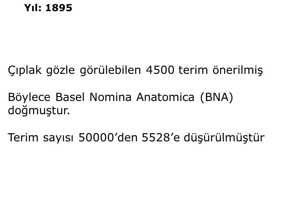 Çıplak gözle görülebilen 4500 terim önerilmiş Böylece Basel Nomina Anatomica (BNA) doğmuştur. Terim sayısı 50000'den 5528'e düşürülmüştür Yıl: 1895