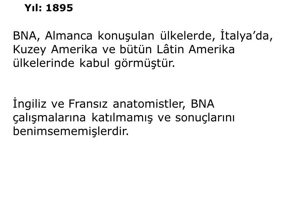 BNA, Almanca konuşulan ülkelerde, İtalya'da, Kuzey Amerika ve bütün Lâtin Amerika ülkelerinde kabul görmüştür. İngiliz ve Fransız anatomistler, BNA ça