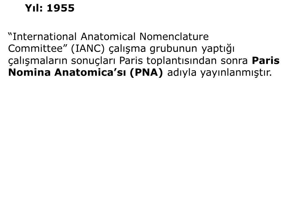 """""""International Anatomical Nomenclature Committee"""" (IANC) çalışma grubunun yaptığı çalışmaların sonuçları Paris toplantısından sonra Paris Nomina Anato"""
