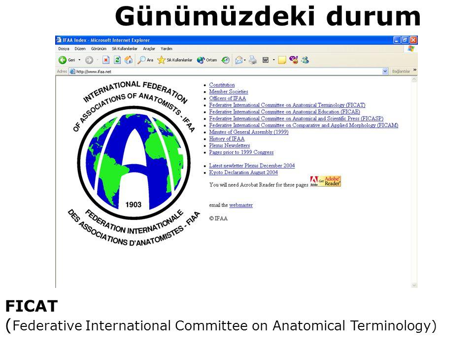 FICAT ( Federative International Committee on Anatomical Terminology) Günümüzdeki durum