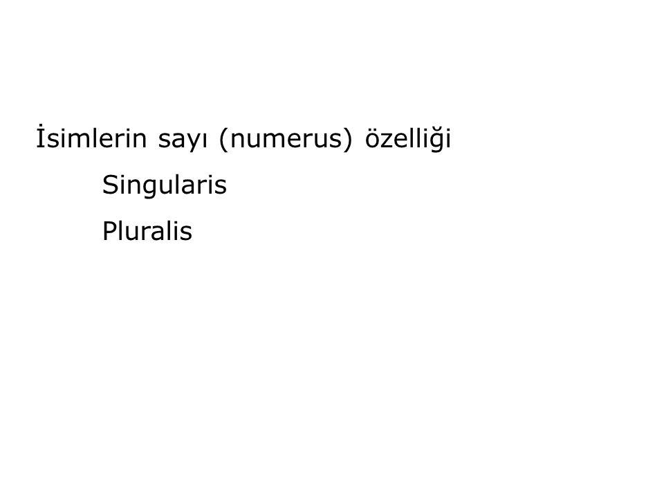 İsimlerin sayı (numerus) özelliği Singularis Pluralis