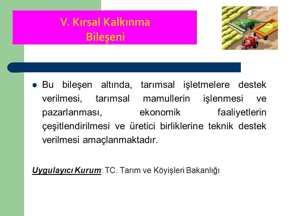 Kırsal Kalkınma Bileşeni:  Tarım, hem sosyal hem de ekonomik açıdan Türkiye için büyük öneme sahiptir.