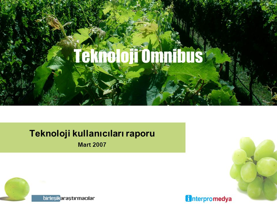 Teknoloji Omnibus Teknoloji kullanıcıları raporu Mart 2007
