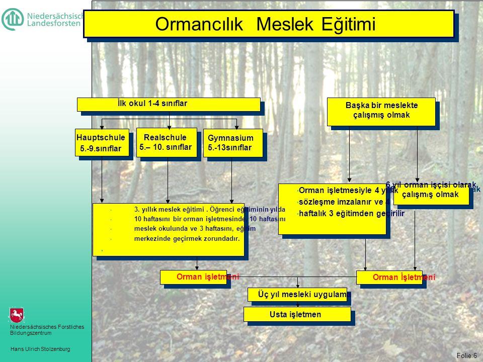 Hans Ulrich Stolzenburg Niedersächsisches Forstliches Bildungszentrum Folie:6 Forstwirtschaftsmeister İlk okul 1-4 sınıflar Başka bir meslekte çalışmış olmak • Orman işletmeni Orman İşletmeni Üç yıl mesleki uygulama Usta işletmen 6 yıl orman işçisi olarak çalışm ı ş olmak 6 yıl orman işçisi olarak çalışm ı ş olmak Hauptschule 5.-9.sınıflar Realschule 5.– 10.
