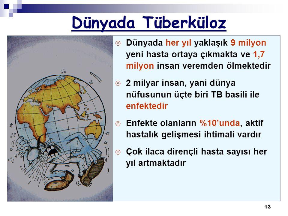 13 Dünyada Tüberküloz L Dünyada her yıl yaklaşık 9 milyon yeni hasta ortaya çıkmakta ve 1,7 milyon insan veremden ölmektedir L 2 milyar insan, yani dü