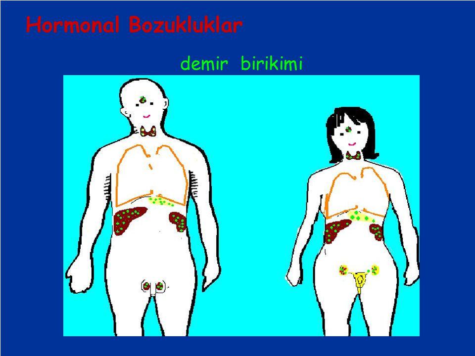 demir birikimi Hormonal Bozukluklar