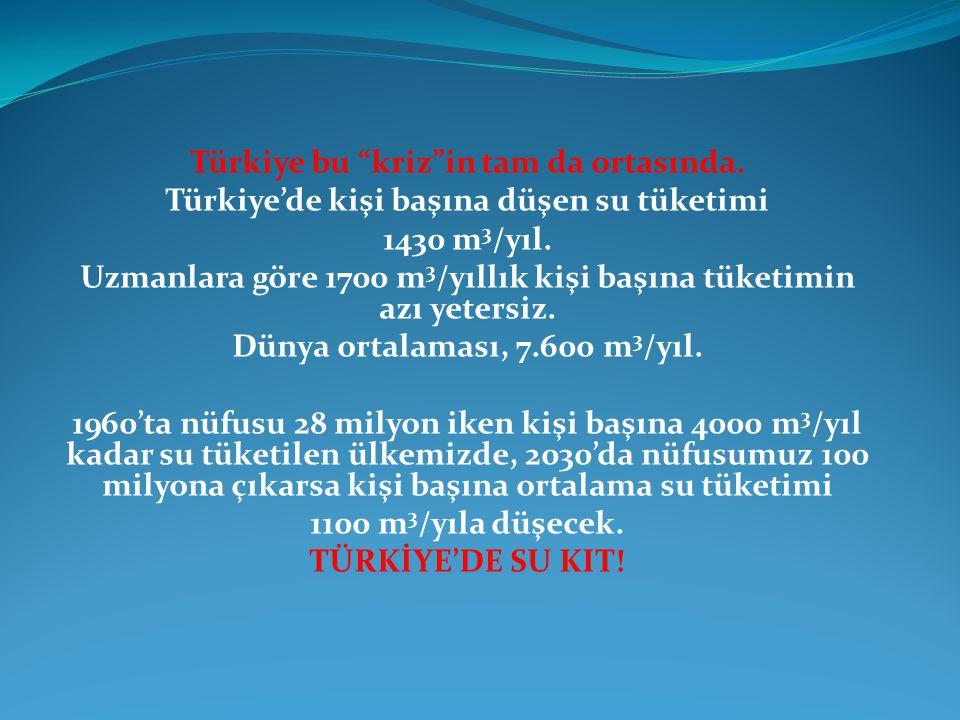 Türkiye bu kriz in tam da ortasında.Türkiye'de kişi başına düşen su tüketimi 1430 m 3 /yıl.