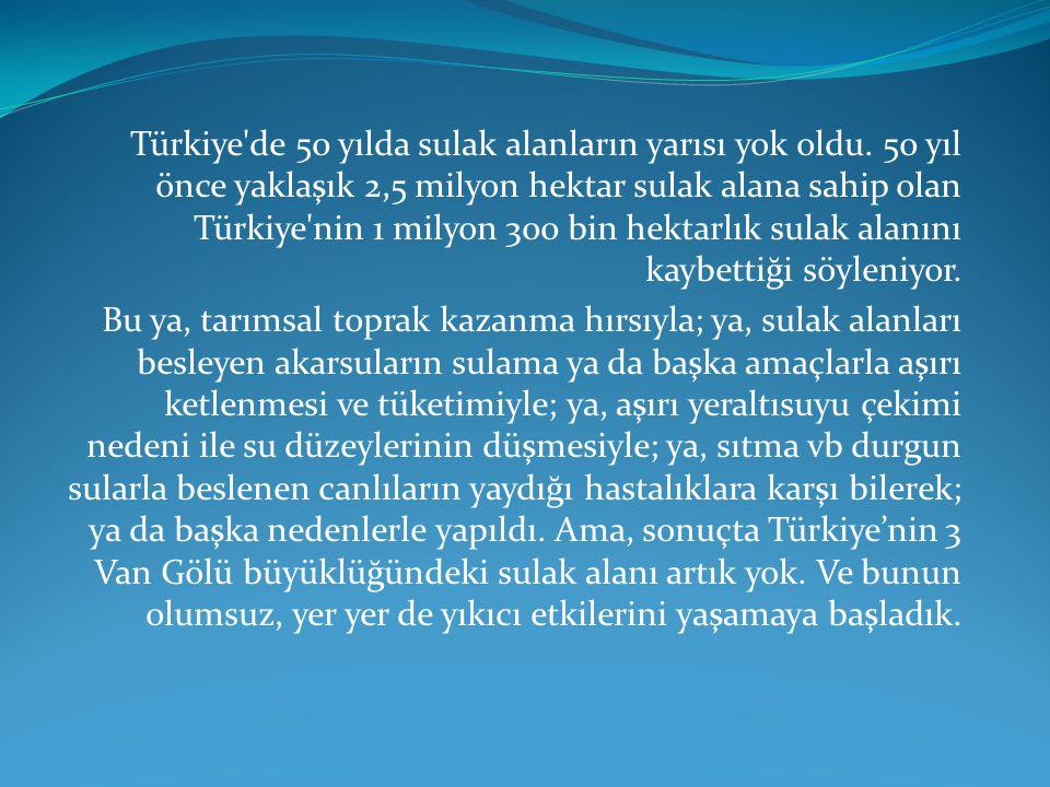 Türkiye de 50 yılda sulak alanların yarısı yok oldu.