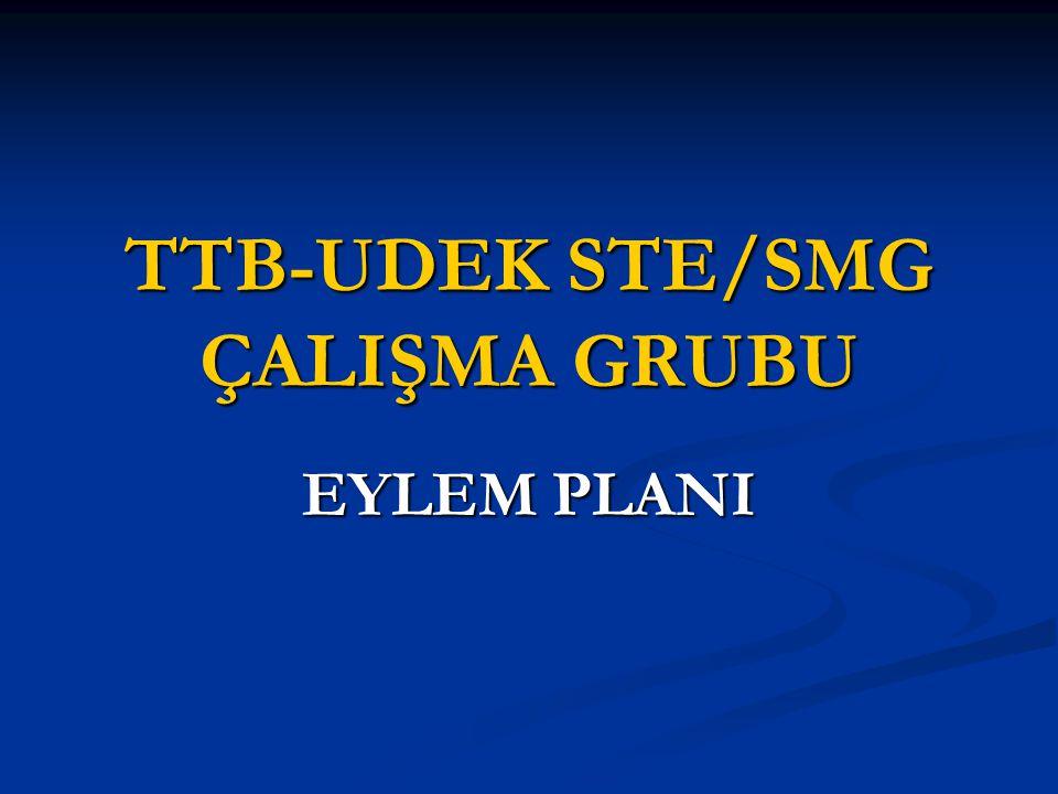 TTB-UDEK STE/SMG ÇALIŞMA GRUBU EYLEM PLANI