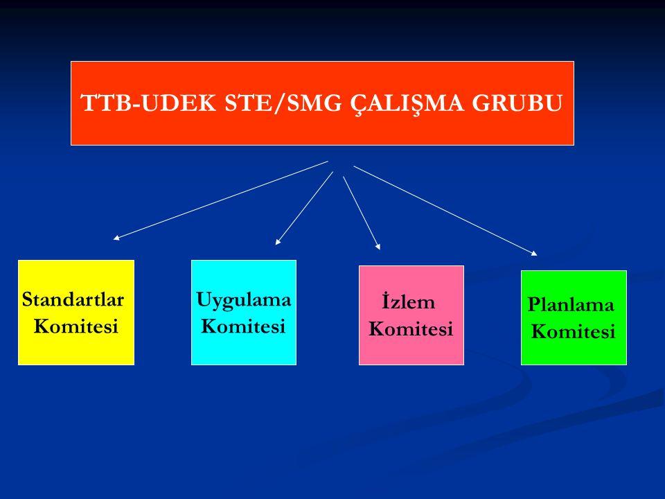TTB-UDEK STE/SMG ÇALIŞMA GRUBU Standartlar Komitesi Uygulama Komitesi İzlem Komitesi Planlama Komitesi