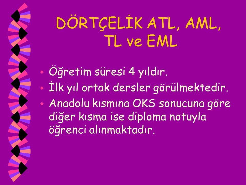 DÖRTÇELİK ATL, AML, TL ve EML w Öğretim süresi 4 yıldır. w İlk yıl ortak dersler görülmektedir. w Anadolu kısmına OKS sonucuna göre diğer kısma ise di
