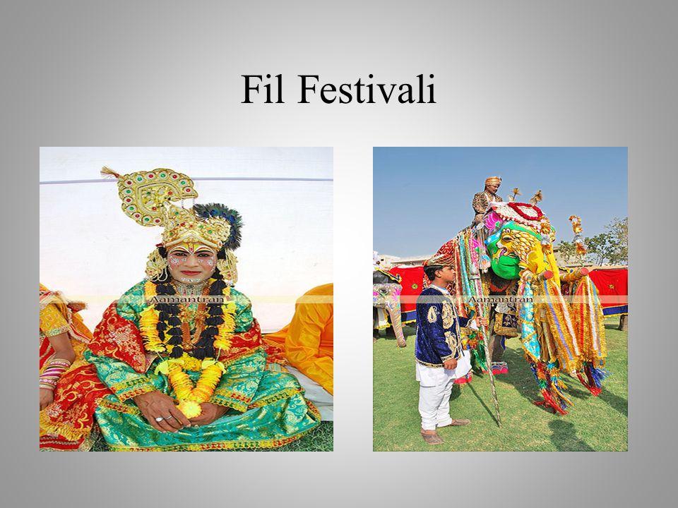 Fil Festivali