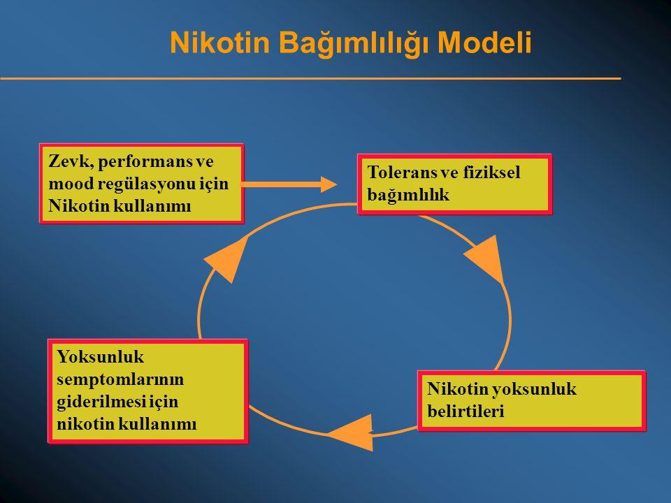 Nikotin Bağımlılığı Modeli Zevk, performans ve mood regülasyonu için Nikotin kullanımı Nikotin yoksunluk belirtileri Tolerans ve fiziksel bağımlılık Y