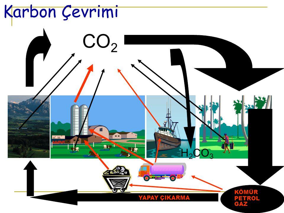 16 Karbon Çevrimi CO 2 H 2 CO 3 KÖMÜR PETROL GAZ FOTOSENTEZ FOSİLLEŞMEFOSİLLEŞME SU DOĞAL ÇIKIŞ YAPAY ÇIKARMA