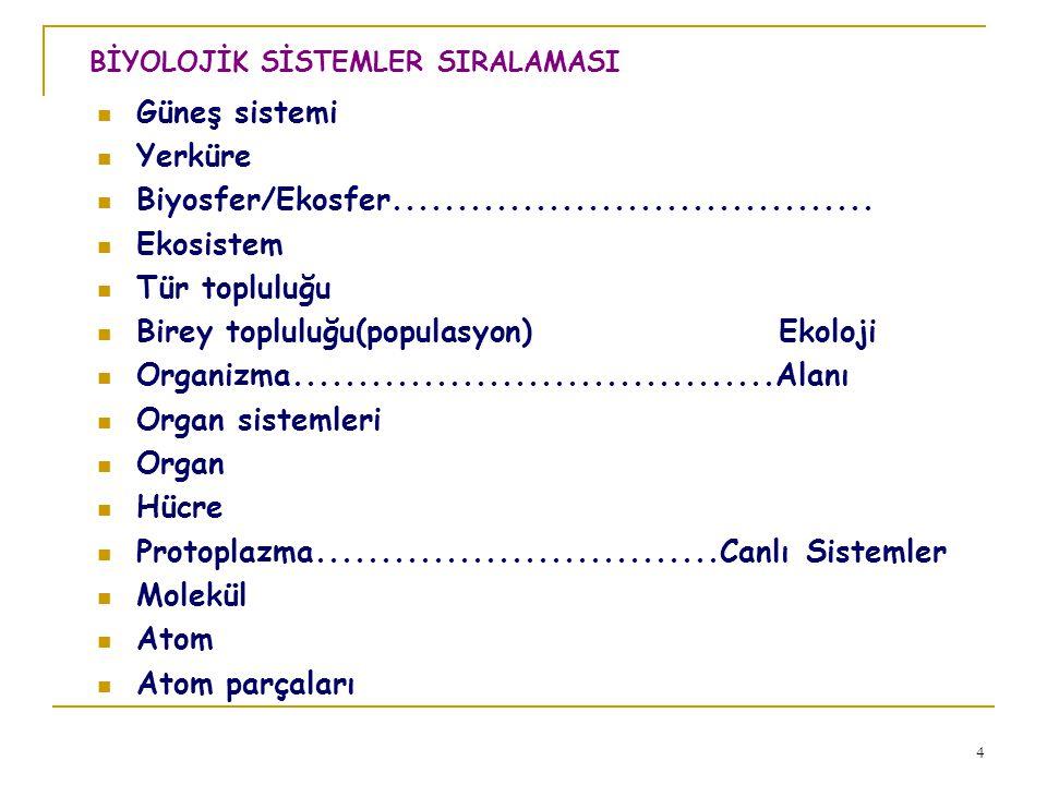 4  Güneş sistemi  Yerküre  Biyosfer/Ekosfer.....................................  Ekosistem  Tür topluluğu  Birey topluluğu(populasyon) Ekoloji