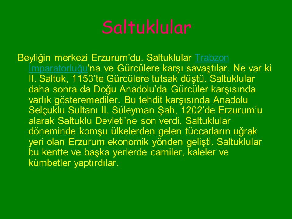 Saltuklular Saltuklu Beyliği, Alp Arslan'ın komutanlarından Emir Saltuk'un fethettiği Erzurum ve çevresinde kuruldu.