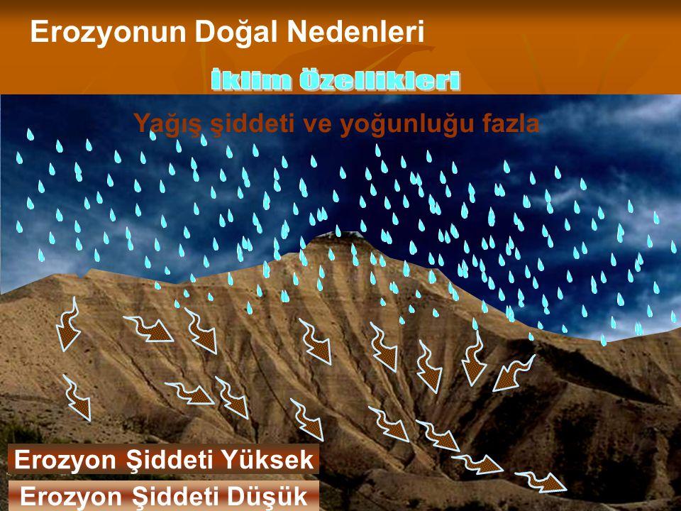 13 Yağış şiddeti ve yoğunluğu az Erozyonun Doğal Nedenleri Yağış şiddeti ve yoğunluğu fazla Erozyon Şiddeti Yüksek Erozyon Şiddeti Düşük