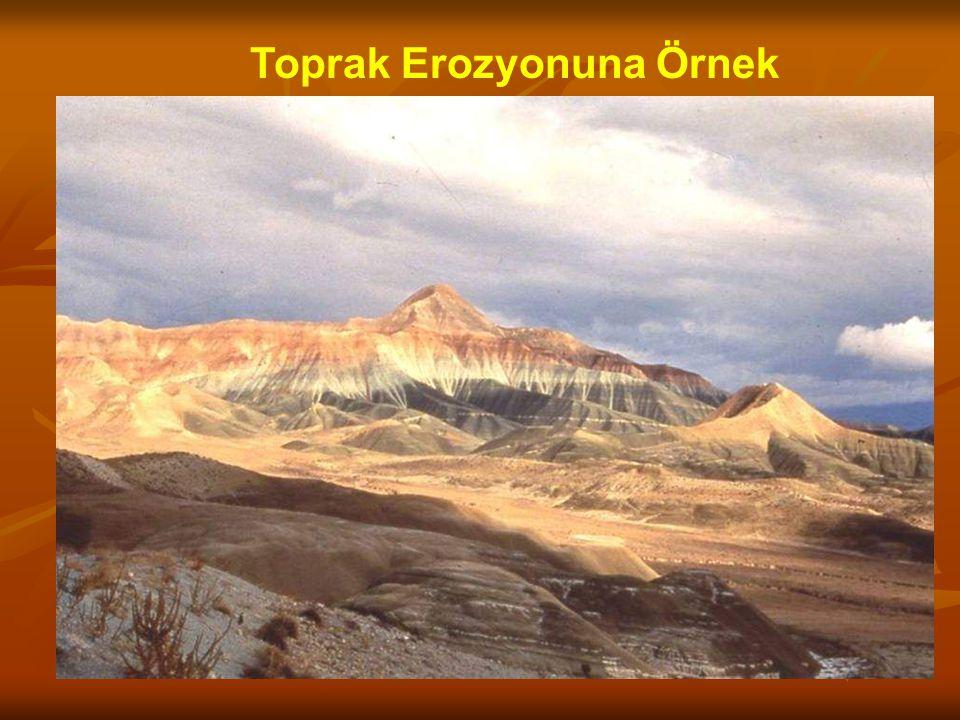 Toprak Erozyonuna Örnek