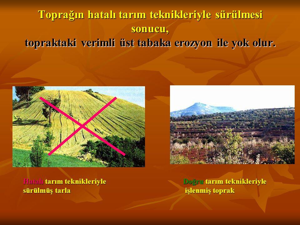 Toprağın hatalı tarım teknikleriyle sürülmesi sonucu, topraktaki verimli üst tabaka erozyon ile yok olur. Hatalı tarım teknikleriyle sürülmüş tarla Do