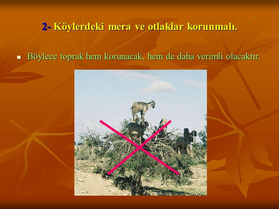 2- Köylerdeki mera ve otlaklar korunmalı.  Böylece toprak hem korunacak, hem de daha verimli olacaktır.