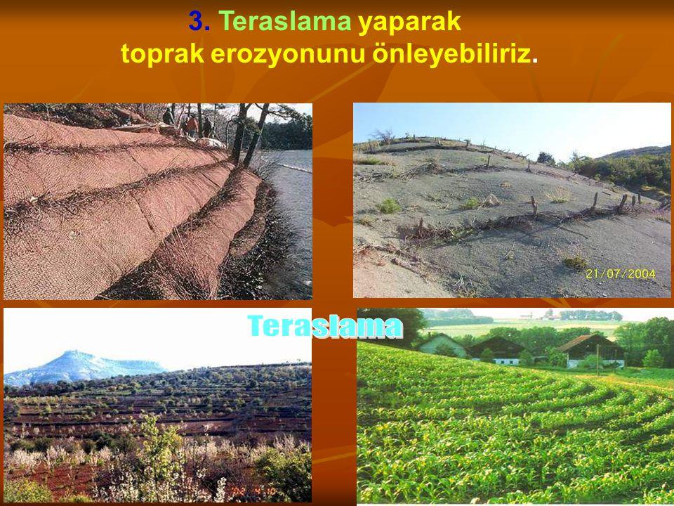 3. Teraslama yaparak toprak erozyonunu önleyebiliriz.