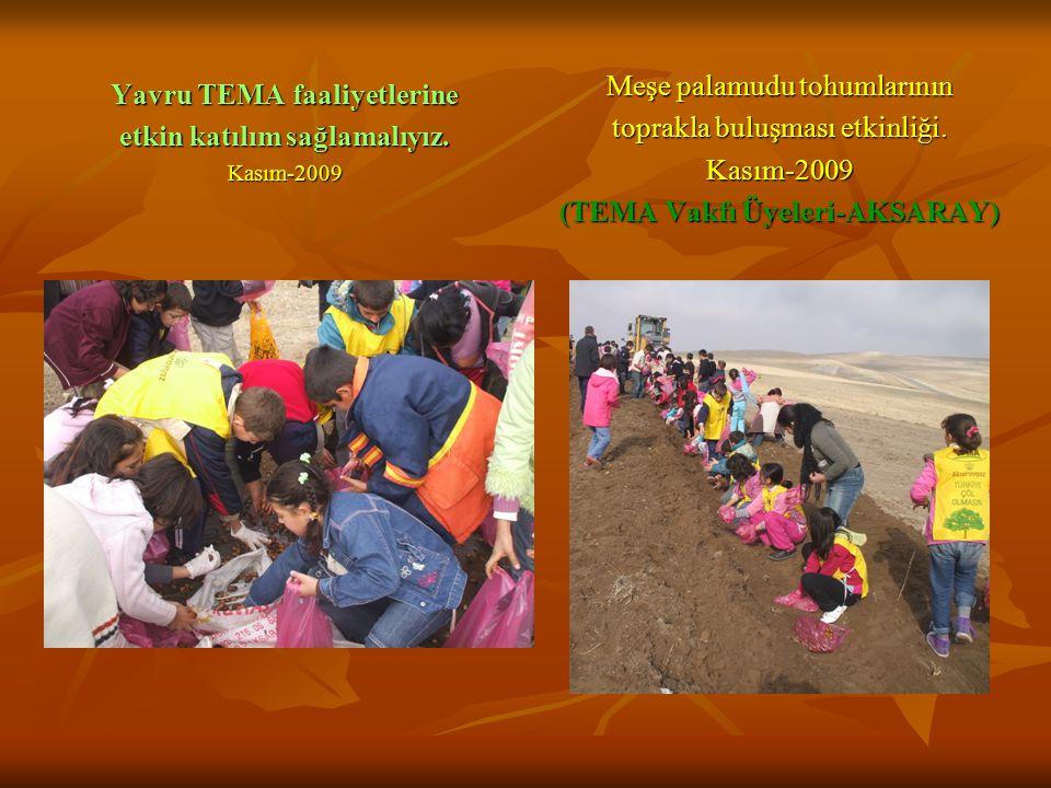 Yavru TEMA faaliyetlerine etkin katılım sağlamalıyız. Kasım-2009 Meşe palamudu tohumlarının toprakla buluşması etkinliği. Kasım-2009 (TEMA Vakfı Üyele