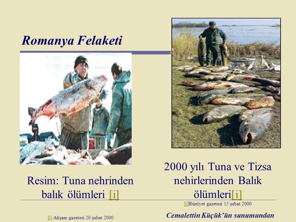 Romanya Felaketi Resim: Tuna nehrinden balık ölümleri [i][i] [i] Akşam gazetesi 20 şubat 2000 2000 yılı Tuna ve Tizsa nehirlerinden Balık ölümleri[i]