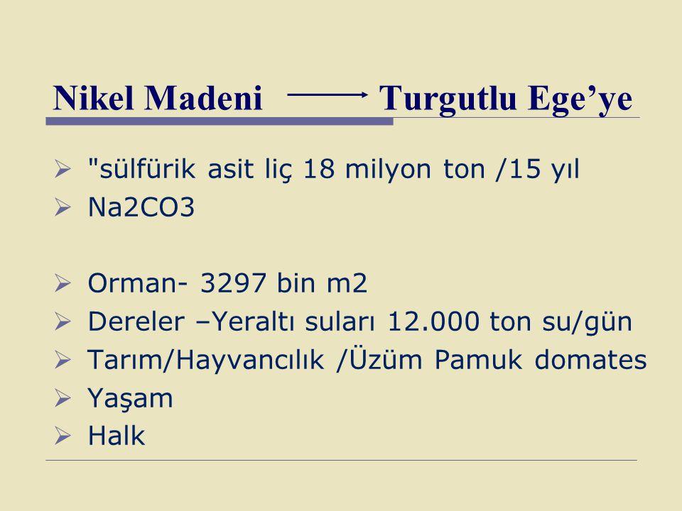 Nikel Madeni Turgutlu Ege'ye 