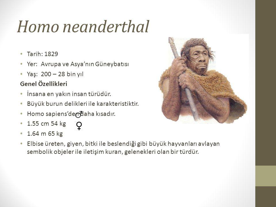 Homo neanderthal • Tarih: 1829 • Yer: Avrupa ve Asya'nın Güneybatısı • Yaş: 200 – 28 bin yıl Genel Özellikleri • İnsana en yakın insan türüdür.