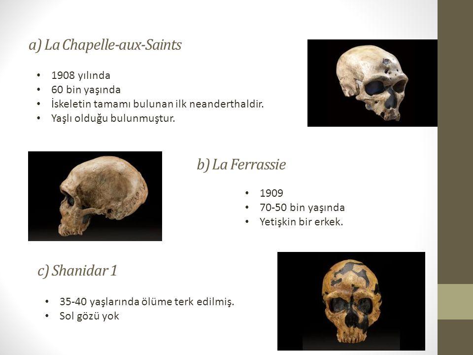 a) La Chapelle-aux-Saints • 1908 yılında • 60 bin yaşında • İskeletin tamamı bulunan ilk neanderthaldir.