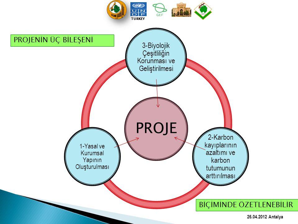 PROJE 3-Biyolojik Çeşitliliğin Korunması ve Geliştirilmesi 2-Karbon kayıplarının azaltımı ve karbon tutumunun arttırılması 1-Yasal ve Kurumsal Yapının