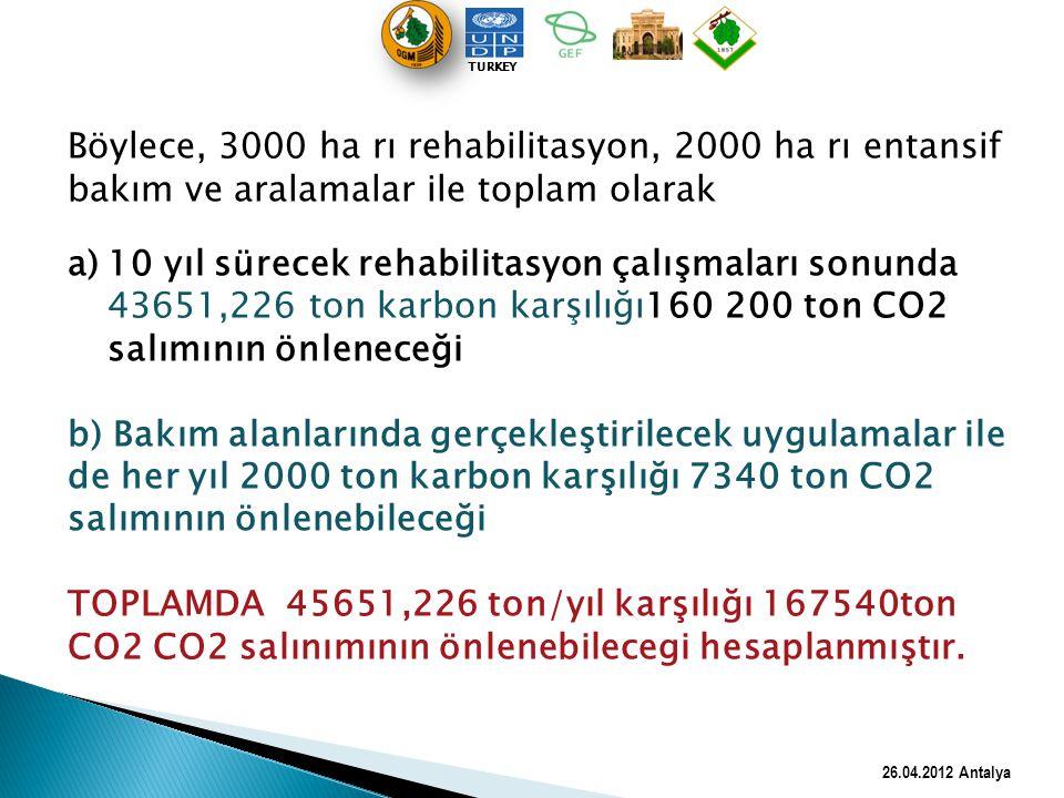 Böylece, 3000 ha rı rehabilitasyon, 2000 ha rı entansif bakım ve aralamalar ile toplam olarak a)10 yıl sürecek rehabilitasyon çalışmaları sonunda 4365