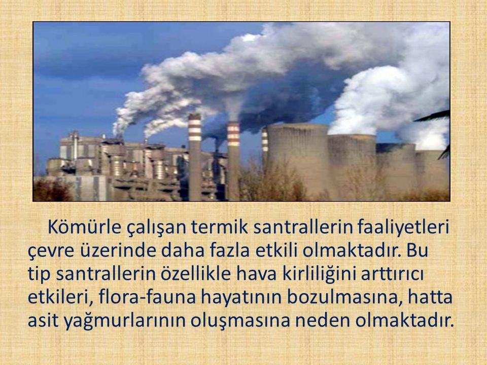 Kömürle çalışan termik santrallerin faaliyetleri çevre üzerinde daha fazla etkili olmaktadır. Bu tip santrallerin özellikle hava kirliliğini arttırıcı