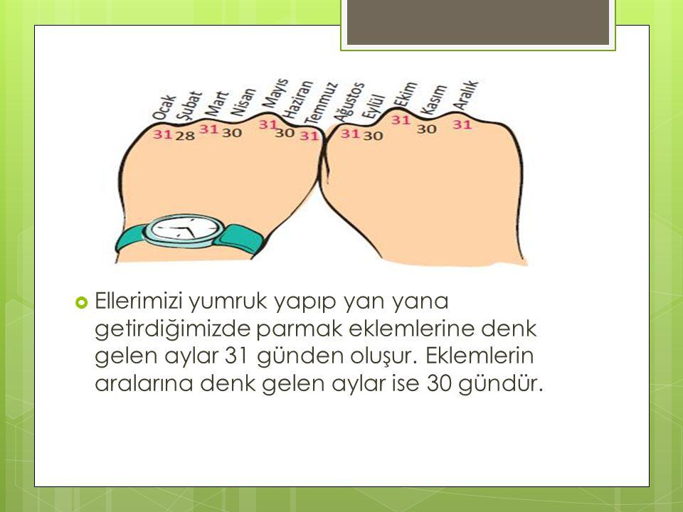  Ellerimizi yumruk yapıp yan yana getirdiğimizde parmak eklemlerine denk gelen aylar 31 günden oluşur. Eklemlerin aralarına denk gelen aylar ise 30 g