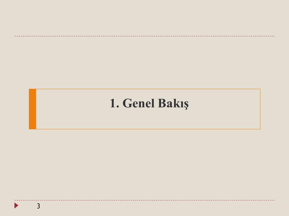 Genel Bakış (1) 4  Türkiye nin gelişmişlik düzeyi göz önüne alındığında PISA daki performansı yüksektir.