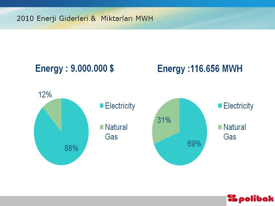 2010 Enerji Giderleri & Miktarları MWH
