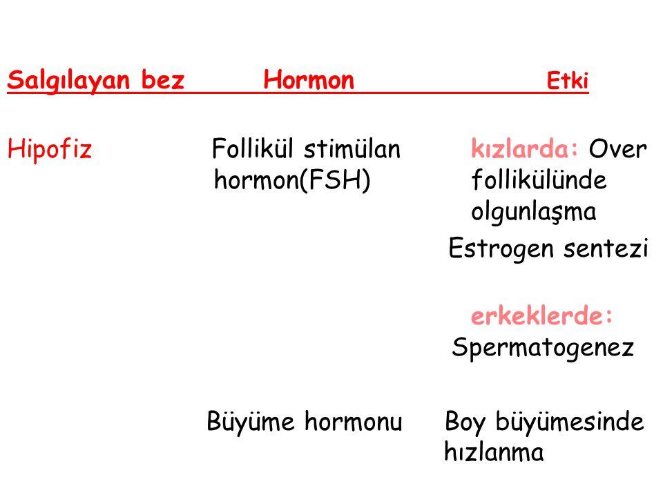 Salgılayan bez Hormon Etki Hipofiz Follikül stimülan kızlarda: Over hormon(FSH) follikülünde olgunlaşma Estrogen sentezi erkeklerde: Spermatogenez Büy