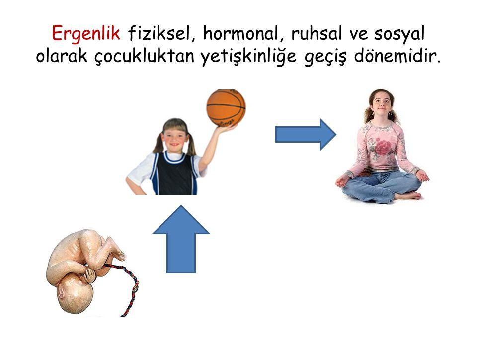 Ergenlik fiziksel, hormonal, ruhsal ve sosyal olarak çocukluktan yetişkinliğe geçiş dönemidir.