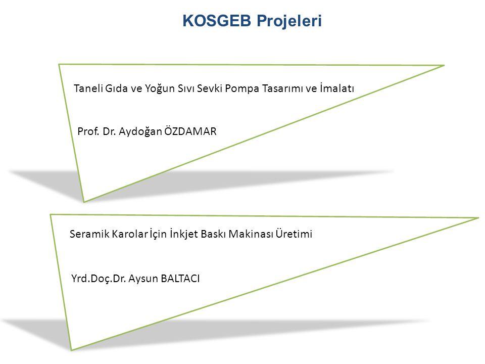 KOSGEB Projeleri Taneli Gıda ve Yoğun Sıvı Sevki Pompa Tasarımı ve İmalatı Prof. Dr. Aydoğan ÖZDAMAR Seramik Karolar İçin İnkjet Baskı Makinası Üretim