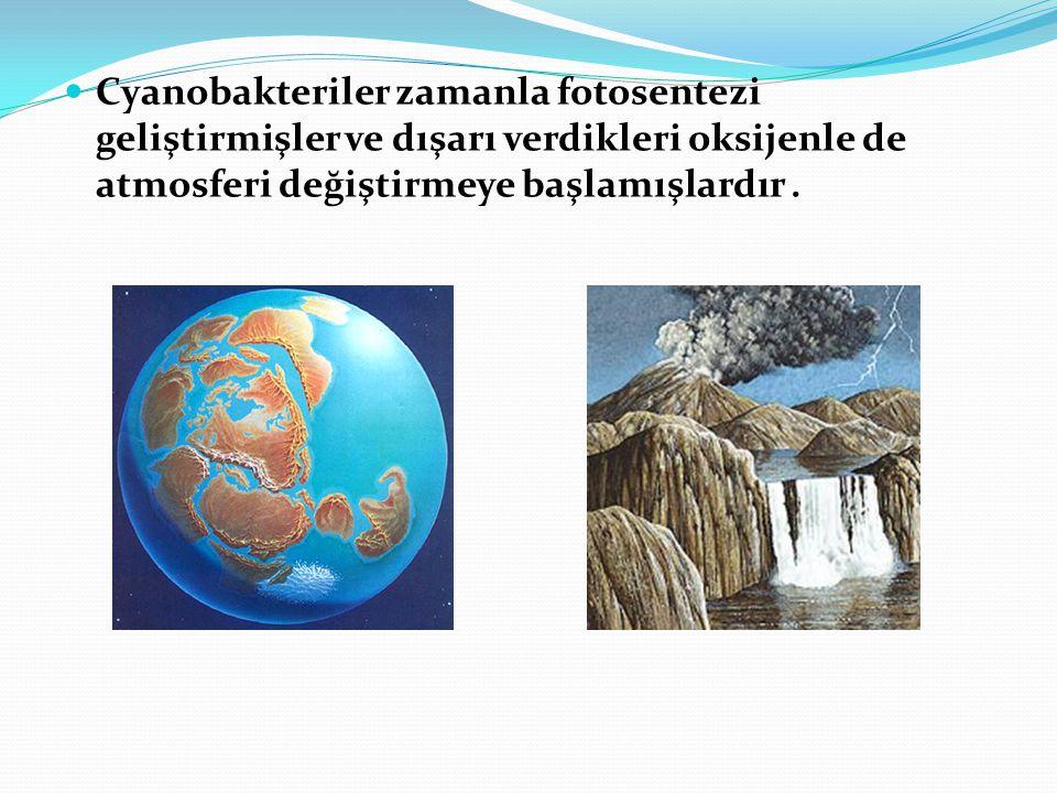  Cyanobakteriler zamanla fotosentezi geliştirmişler ve dışarı verdikleri oksijenle de atmosferi değiştirmeye başlamışlardır.