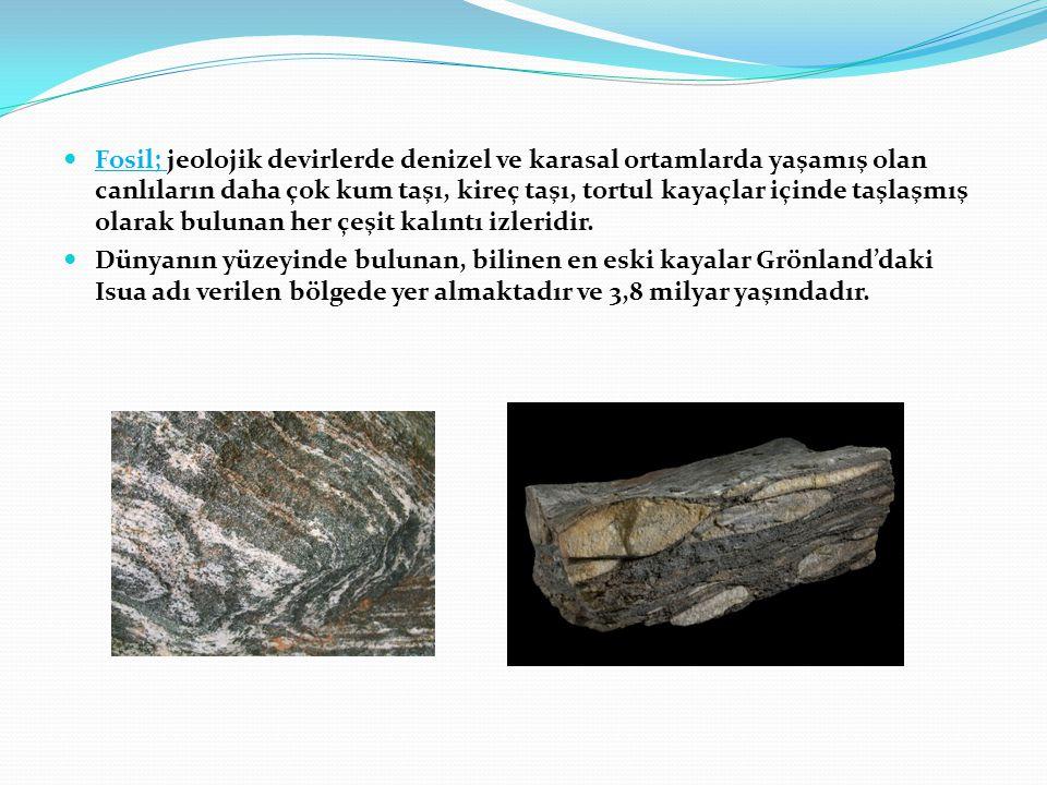  Fosil; jeolojik devirlerde denizel ve karasal ortamlarda yaşamış olan canlıların daha çok kum taşı, kireç taşı, tortul kayaçlar içinde taşlaşmış ola