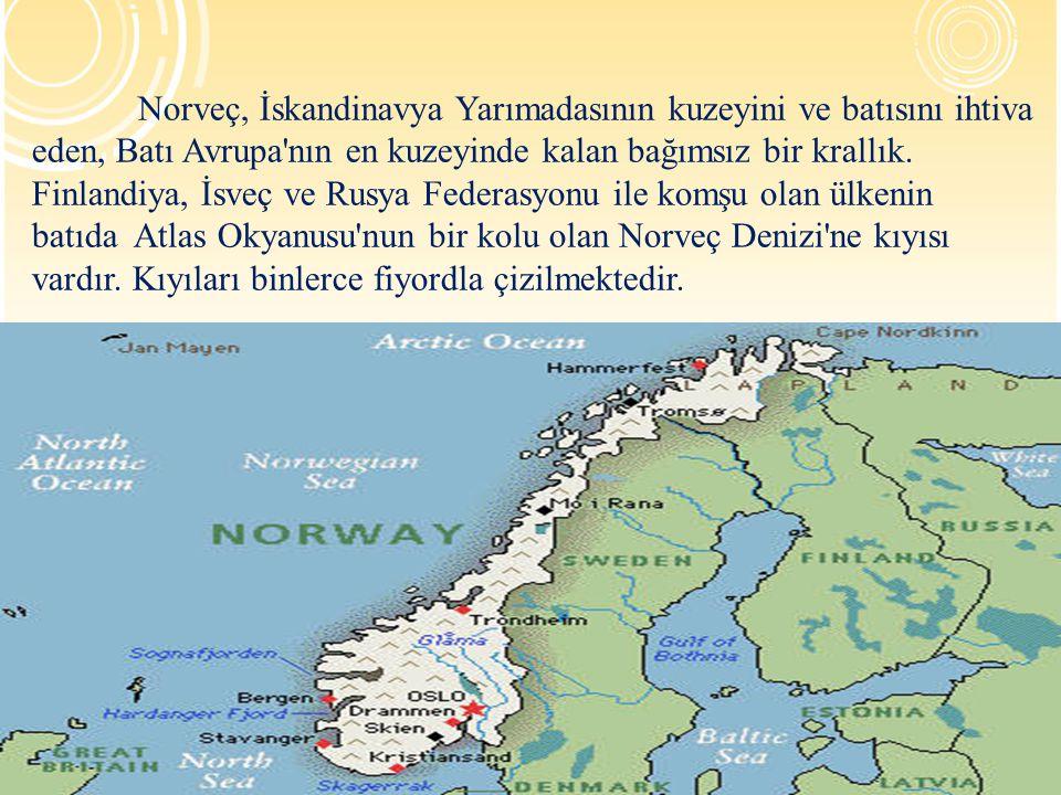 YETİŞKİN EĞİTİMİ  Study associations (kapsamlı program ve çalışma grubu faaliyetleri)  Folk High schools (Genel eğitim veren dini kuruluşlara ait okullar)  Uzaktan öğretim  İkinci dil olarak Norveç dilinde kurslar (Göçmenler için)  İş Piyasası kursları (İşi olmayanları işe hazırlar)  İlköğretim düzeyi  Lise düzeyi