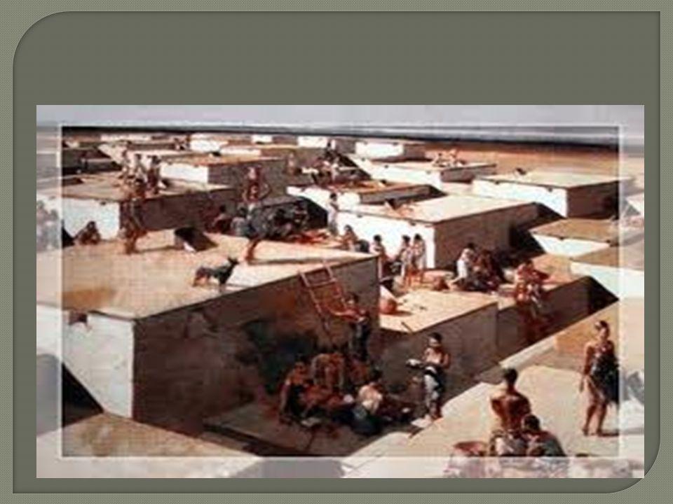  Çatalhöyükte evler birbirine yapı ş ıktı veya hiç sokak yoktu ya da çok az sayıda vardı.