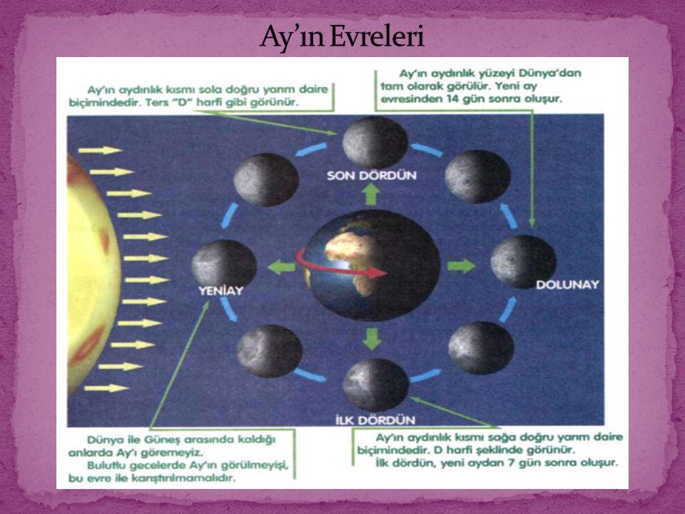 Ayın dört ana evresi vardır. Ana evreler yaklaşık 7 günlük sürelerle gözlenir. 1. Yeni Ay Evresi 2. İlk Dördün Evresi 3. Dolunay Evresi 4. Son Dördün