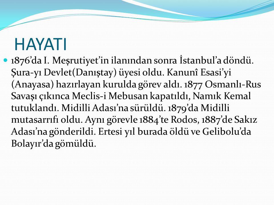 HAYATI  1876'da I. Meşrutiyet'in ilanından sonra İstanbul'a döndü. Şura-yı Devlet(Danıştay) üyesi oldu. Kanunî Esasi'yi (Anayasa) hazırlayan kurulda