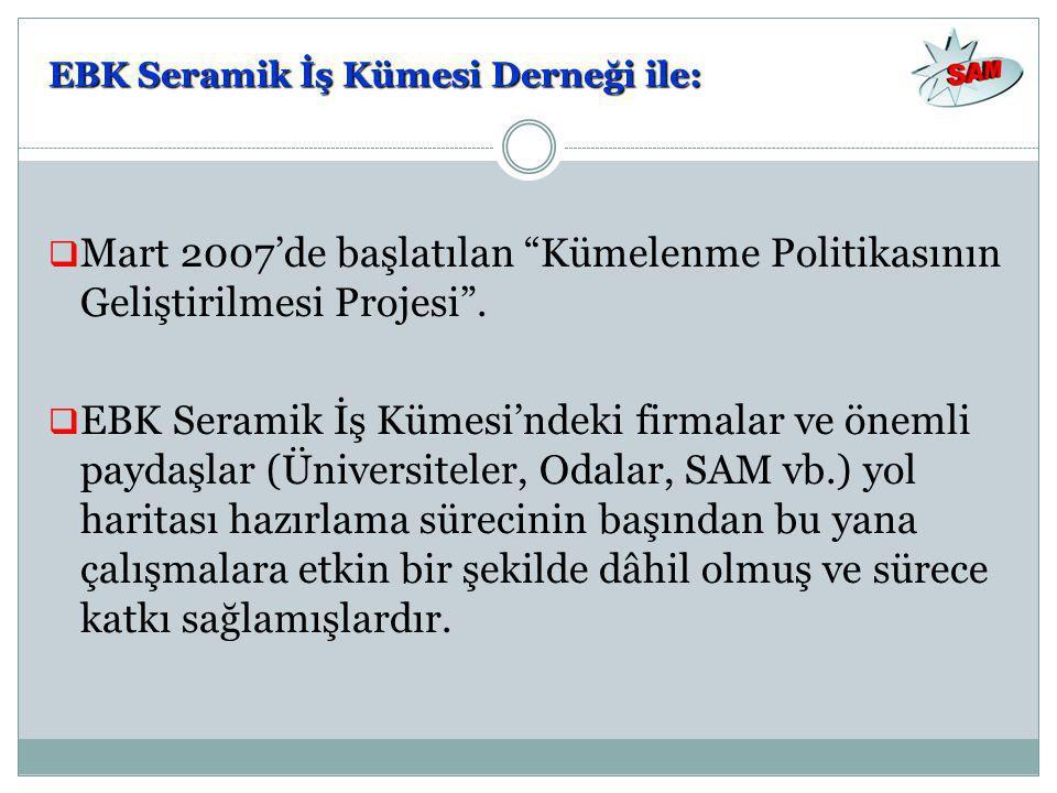  Mart 2007'de başlatılan Kümelenme Politikasının Geliştirilmesi Projesi .