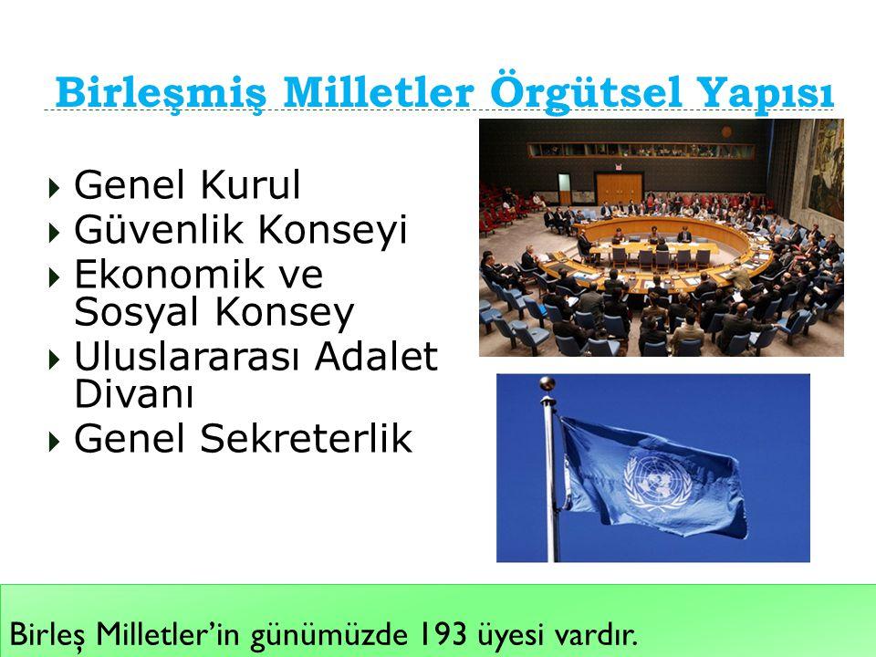 Birleşmiş Milletler Örgütsel Yapısı Birleş Milletler'in günümüzde 193 üyesi vardır.